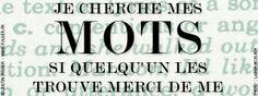 Toujours des mots © France Inter - 2013 / Justin Folger.
