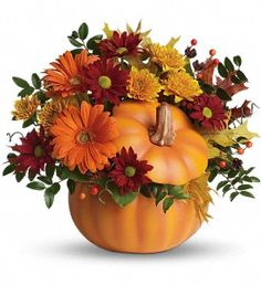 Perfect for a fall centerpiece, birthday or Halloween party, this flower-filled ceramic pumpkin is a real cutie-pie.  Bright and light orange gerberas, bronze cushion spray chrysanthemums, red daisy spray chrysanthemums, huckleberry, yellow oak leaves and more fill a hand-painted ceramic pumpkin that can be used over and over again. In fact, this pretty pumpkin is destined to carve out a special place in someone's home for years to come!