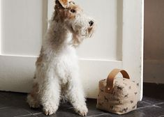 Plum & Ashby - Bertie and our All The Breeds Doorstop http://www.plumandashby.co.uk/spun-and-woven/all-the-breeds-jute-door-stop