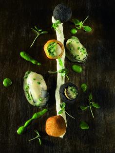 Croquettes d'huîtres Marennes Oléron comme une crépinette, panées à l'encre de seiche - L'Agence de l'Alimentation Nouvelle-Aquitaine Les Croquettes, Comme, Sea Shells, Pisces, Ink