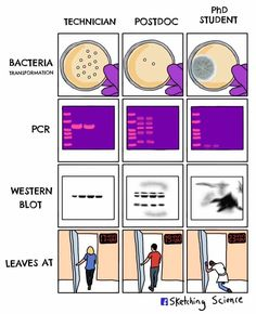 For Scientists, These Webcomics Are Painfully Accurate - - For Scientists, These Webcomics Are Painfully Accurate Biology humor Für Wissenschaftler sind diese Webcomics schmerzlich genau – Memebase – lustige Memes Biology Jokes, Funny Science Jokes, Chemistry Jokes, Funny Memes, Laboratory Humor, Medical Laboratory Science, Biomedical Science, Forensic Science, Lab Humor