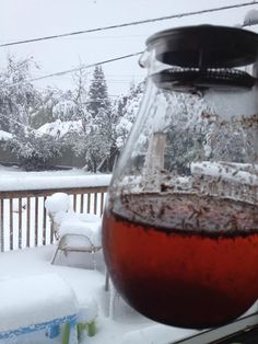 No one would quite believe that this picture is from the 11th of September in Calgary, but it sure is! And Meagan Basset actually made some iced rooibos tea! Good for you, Meagan. :)