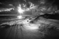 Clyde Butcher - Black and White Fine Art Photographer