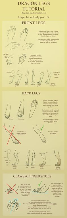 Dragon legs tutorial by ~Psyco-angel on deviantART