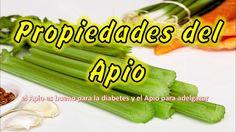 Propiedades y Beneficios del Apio, para que sirve el APIO, el Apio es bueno para la diabetes y apio para adelgazar, Se ha utilizado desde tiempos históricos ...