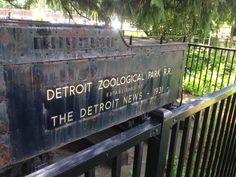 Detroit Zoo Tips