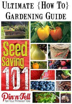 Best Gardening Tips on Pinterest - via Pin-n-Tell.com