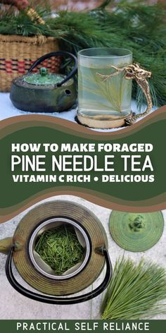 Pine needle tea has many health benefits that are essential during winter. It's full of natural vitamin C and tastes absolutely wonderful. Citrusy and woodsy, it's a spectacular wintertime herbal tea. Tea Benefits, Health Benefits, Natural Vitamin C, Edible Wild Plants, Herbs For Health, Wild Edibles, Herbal Remedies, Natural Remedies, Pine Needles