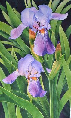 Karen Benco Irises Purple- Framed Black