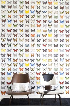 Butterfly wallpaper - small accent wall or ceiling in girl room. Paired with a soft solid color. Wallpaper Panels, Kids Wallpaper, Wall Wallpaper, Pattern Wall, Just Kids, Butterfly Wallpaper, Inspiration Wall, Home And Deco, Wall Treatments