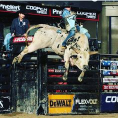 Deep Water by Chad Berger@chadberger Apr 24, 2017. 204 Deep Water is trying to jump over the moon @TeamCooperTire @LubriSynHA @AmericanHatComp @SweetProFeeds