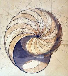 Epic Web Find: Let This Visual Stimulation Inspire your Meditation naidalunabioluminescent: logarithmic growth sketch with ink&watercolors/paper by Rafael Araujo Sharing is Caring wtfmandala Fractal Geometry, Sacred Geometry Art, Geometry Tattoo, Sacred Art, Fractal Art, Image Nature, Math Art, Art Graphique, Flower Of Life