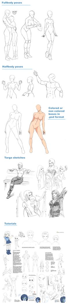 Poses, tutorials, sketches and more on patreon by Precia-T.deviantart.com on @DeviantArt
