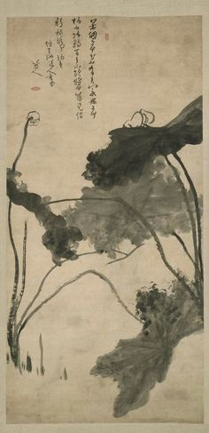 Lotus:  Homage to Xu Wei. by Bada Sharen b. 1626.  ink and wash on paper. Qing Dynasty