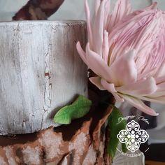 Bark effect and sugar Protea Protea Flower, Sugar Flowers, How To Make Cake, Cake Designs, Cakes, Pretty, Plants, Cake Templates, Flora