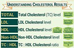 Understanding Cholesterol Test Results
