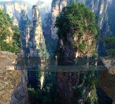 French studio Martin Duplantier Architectes has proposed a series of bridges and viewpoints for Zhangjiajie National Forest Park – the site of the world's longest and highest glass bridge.
