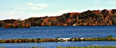 Cowan Lake State Park is a lovely State Park, and jewel attraction in Southwest Ohio! the water is great for swimming & sailing, and the grounds perfect for hiking. A bald eagle couple lives on property.  http://www.clintoncountyohio.com/list/parks/cowan-lake-state-park2  image credit: Sarah Newton  #DiscoverOhio #StateParks #Fall