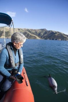 World' rarest dolphin heading towards extinction