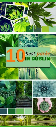 Looking what to do in Dublin? A place to recharge. One of the TOP things to do in Dublin. Suits for all the family, you kids will love the green space.A list of Top 10 Dublin Parks.Check it out now. Stuff To Do, Things To Do, Good Things, Visit Dublin, Europe Destinations, Parks, Ireland, Photos, Suits