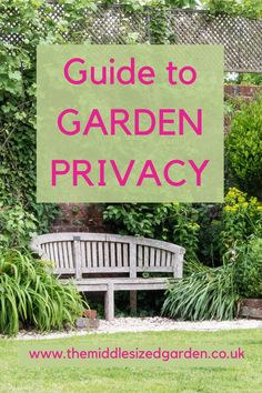 3 top garden privacy tips: how to improve privacy when overlooked from above, achieve garden privacy without blocking light and a DIY privacy screen. Seaside Garden, Meadow Garden, Dry Garden, Garden Plants, Garden Care, Flowers Garden, Garden Tips, The Middle, Garden Privacy Screen