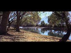 Hour of the Gun (1967) Full Western Movie | James Garner Full Movie