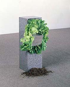 (A) Giovanni Anselmo, Arte Povera : le minéral et le végétal. Lorsque la salade fane, le bloc de granite tombe ; il faut alors changer la salade #UneSource