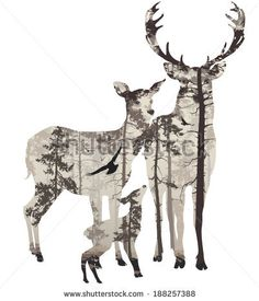 Deer family silhouette with forest