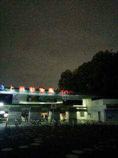 上野動物園 ナイトズー
