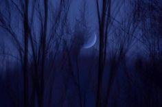 Buon Anno con Luna crescente  Lunario: Gennaio e Madre Natura  Un'immagine della Madre Natura è la Luna che così cantava un inno magico della tarda antichità 'Vieni a me, cara padrona, Selene trifronte e ascolta graziosamente il mio sacro canto magico: ornamento della notte, nuova, portatrice di luce ai mortali, (...) regina… sii benigna con me che ti invoco e ascoltami graziosamente, (...)' #garden #gardening #insipration #art #ideas #design #moon #nature #photography #outdoor #landscape
