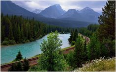 Bow River Green Forest Landscape Wallpaper | bow river green forest landscape wallpaper 1080p, bow river green forest landscape wallpaper desktop, bow river green forest landscape wallpaper hd, bow river green forest landscape wallpaper iphone