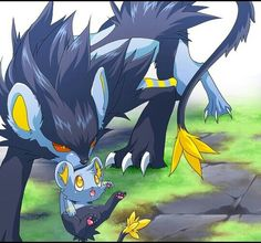 The epic look of luxray mixed with tiny curious face of a shinx is sooooo freakin cuutteee
