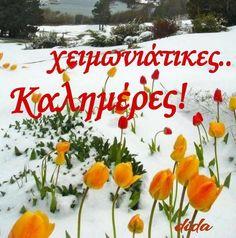 Good Morning, Spirituality, Winter, Beautiful, Buen Dia, Winter Time, Bonjour, Spiritual, Good Morning Wishes