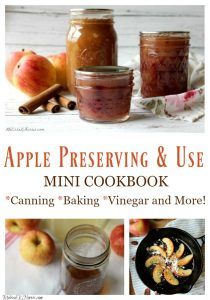 9 Ways to Preserve Apples at Home – Use these ideas to up your apple preservation game. Canning pie fillings, freezing apple pectin, dehydrated cinnamon apple slices, and more! Recipes included! #apples #applepreservation #appleharvest #foodstorage #homsteading