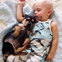 Rescue puppy Theo, who was baby Beau's favorite nap buddy this year. | The 23 Most Adorable Puppies Of 2013