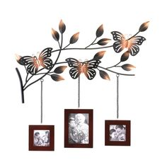 The most lovely way to display three of your favorite family photos! A trio of wood picture frames hang from a metallic branch blooming with leaves and home to three gorgeously detailed butterflies. Butterfly Picture Frame Decor by Rustica House. Picture Frame Decor, Hanging Picture Frames, Collage Picture Frames, Frame Wall Decor, Hanging Pictures, Picture On Wood, Picture Wall, Frames On Wall, Wall Décor