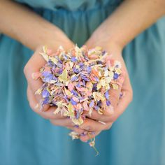 Are you interested in our natural petal wedding confetti? With our biodegradable confetti for weddings you need look no further.