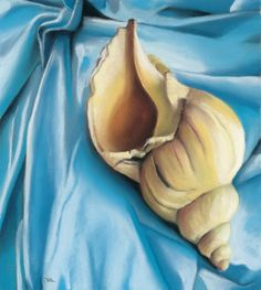 seashell and cloth, painting by artist Ria Hills