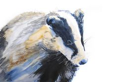 WILL ELLISTON Badger Watercolour PRINT of original painting signed by artist