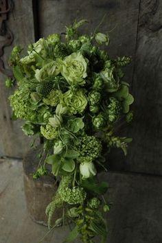 New Flowers Arrangements Green Bouquets 40 Ideas Green Flowers, Love Flowers, Beautiful Flowers, Green Bouquets, Green Leaves, Wedding Bouquets, Wedding Flowers, Green Wedding, Sogetsu Ikebana