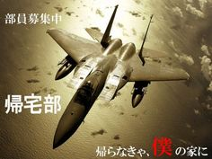 Terebo Scale Military Model Toys Tomcat Eagle Fighter Aircraft Plane Model For Collection Gift Home Decoration Military Jets, Military Weapons, Military Aircraft, Military Life, Fighter Aircraft, Fighter Jets, Air Fighter, Air Force Wallpaper, Ocean Wallpaper