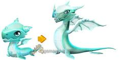 Image result for dragon mania legends prairie dragon breeding TIME