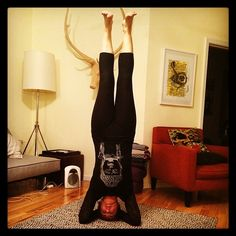 Day 7 - #100HappyDays Happy to have my yoga practice especially when my world is upside down! #YogaTeesNYC #YogaEveryDay #YogaLove #YogaLife #bePresent #breathe #Be #practice #sirsasana #headstand #inversions   Can you be happy for 100 days in a row? Find happiness...join us in the 100 Happy Days challenge! http://100happydays.com