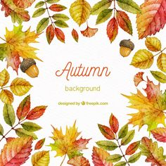 Autumn background in watercolor style Free Vector Plant Illustration, Cute Illustration, Watercolor Background, Watercolor Flowers, Colored Pencil Techniques, Autumn Scenery, Autumn Decorating, Tropical Fruits, Fall Signs