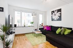 Apartment Living Room Ideas: the Color Scheme : Modern Apartment Living Room Ideas Decor