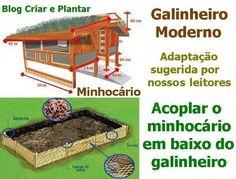 Postado Especial de Permacultura - Special Post of Permaculture   Transição 3.0