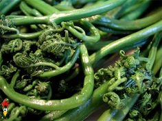 Fiddlehead Recipe Do you prefer your fiddleheads sautéed in garlic and olive oil or mixed into an omelet?