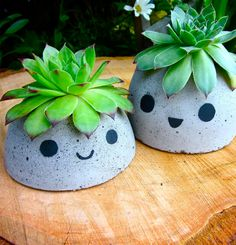 Dollar Store Crafts - Cute Concrete Planters - Best Cheap DIY Dollar Store Craft Ideas for Kids, Tee Dollar Store Crafts, Dollar Stores, Diy Concrete Planters, Diy Planters, Planter Ideas, Concrete Crafts, Concrete Projects, Paint Concrete, Outdoor Planters