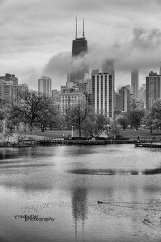 Barry Butler Grey Chicago