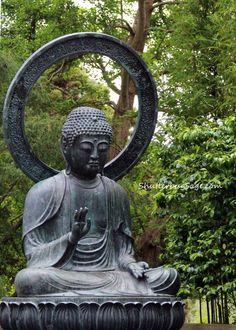 One Thing, Three Ways: Japanese Tea Garden